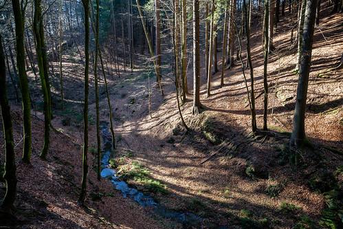 Rabnitzbach, Kumberg 2017