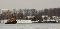 Madison R - Dean Marine & Excavating (Hear and Their) Tags: madison tug tugboat detroit river ice breaker breaking boblo island bob lo bois blanc
