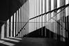 Organ (mntkondr) Tags: japan tokyo roppongi bw fuji fujifilm x100f shadow light architecture tadaoando museum