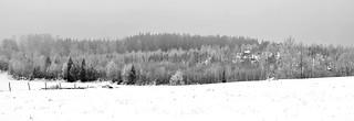 Monochrome winter layers