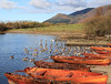 Birds and Boats (maureen bracewell) Tags: lakedistrict autumn birds boats geese lake landscape mountain nature sunshine trees cumbria keswick england uk derwentwater skiddaw lakeside