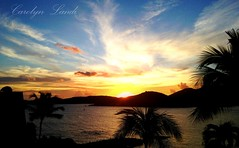US Virgin Islands (socalgal_64) Tags: stthomas islands caribbean usvi usvirginislands carolynlandi ocean sea water bay sunset silhouette clouds colorful palmtrees frenchmansreef landscape nature dock sun longbay saintthomas waterscape
