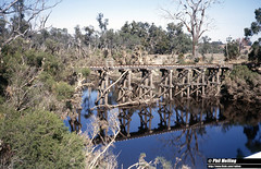 2937 Asplin Bridge 10 April 1982 (RailWA) Tags: railwa philmelling westrail 1982 asplin bridge blackwood river