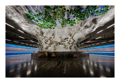 A pond full of water lilies (Andreas Larzon Photography) Tags: architecture blue centeredandsymetry green leadinglines longexposure metro näckrosen orange pond stockholm subway subwayart sweden symmetry tbana trainstation underground urbanlandscape wallart wallpainting floor lightstreaks