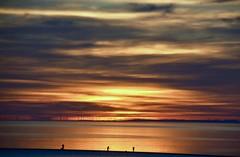 (plot19) Tags: coast england nikon north northern northwest uk sea sunset sunrise son fishing men britain british landscape plot19 photography clouds water