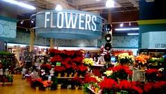 Christmas flowers - SS 365/42 (Maenette1) Tags: christmas flowers display jacksfreshmarket menominee uppermichigan signsunday flicker365 michiganfavorites project365