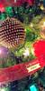 Joyeuses Fêtes! [EXPLORE] (BLEUnord) Tags: joyeuses fêtes arbre tree boule noël ball xmas christmas ruban lumières felix navidad