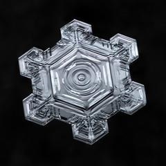 Snowflake-a-Day No. 20 (Don Komarechka) Tags: snowflake snow flake ice crystal nature fractal hexagon physics water frozen mpe focusstacking