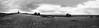 Bollenberg Pano (fs999) Tags: fs999 fschneider aficionados pentax ist starist pentaxist pentaxian justpentax 35mm film 24x36 camera 135 filmcamera ashotadayorso topqualityimage topqualityimageonly artcafe pentaxart corel paintshoppro paintshoppro2018ultimate 2018ultimate bollenberg orschwihr hautrhin alsace france adox silvermax smax 100iso blackwhite blackandwhite bw noirblanc noiretblanc nb blackwhitephotos plustek opticfilm 120 scanner 1600dpi silverfast ai studio soligorcdwideauto20mmf28 soligor soligor20 wide auto wideauto 20mm stitched panorama assemblé zusammengesetzt microsoft ice image composite editor 4photos