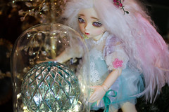 The Christmas Fairy (assamcat) Tags: fawn fairyland littlefee bjd balljointeddoll abjd fairies christmas canon macro