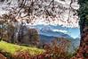 Paisaje de Otoño (ccc.39) Tags: asturias oviedo latores aramo montes naturaleza campo otoño