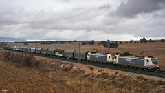 Bobinero por Alpera (lagunadani) Tags: paisaje bobinero tren ferrocarril locomotora 253 traxx alpera albacete renfe bobinas train railway