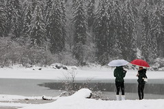 """Fusine UD IT - """"Lago superiore"""" (Fabrizio Lucchese 1') Tags: italia fvg italien fusine neve persone people ombrello canon760d fabriziolucchese snow italy friuliveneziagiulia снег schnee inverno winter lago"""