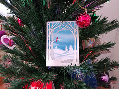 02Jan18 Chrissy Card from my sister in Atlanta, Georgia. A little late, but I'll keep the tree up one more day for it. <3 #CF18 #LIGHT #2018pad #photoaday #picaday