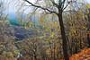 Glen Lyon Autumn Colours (eric robb niven) Tags: ericrobbniven scotland dundee glenlyon