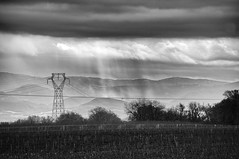 par tout temps (delphine imbert) Tags: nature mercurol drôme black white pluie brouillard vent froid nuage monochrome