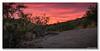 Hiking Into The Sunset (Ken Mickel) Tags: arizona buckeye clouds cloudy desert kenmickelphotography landscape landscapedesert outdoors plants seasons sky skylineregionalpark summer sunsets topaz topazclarity backlighting backlightingphotography backlit backlitphotography nature photography sunset
