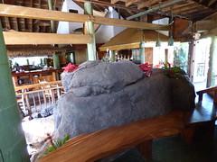 Wailua River State Park - Fern Grotto (58) (pensivelaw1) Tags: hawaii kauai wailuariverstatepark ferngrotto