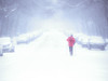 rien n'arrête les Montréalais - 2 (photosgabrielle) Tags: photosgabrielle streetphotography montreal ville city urban urbain hiver snow winter neige ski