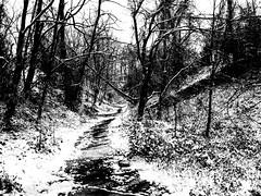 First Snow in Baltimore (rclatter) Tags: olympus em1mkii voigtlander175mmf095 blackwhite snow