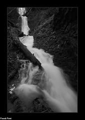 vue sur la Cascade Extrème Amont du ruisseau de Boisset - Bracon - Jura (francky25) Tags: vue sur la cascade extrème amont du ruisseau de boisset bracon jura franchecomté noir et blanc