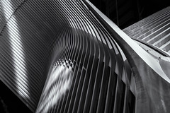 Oculus (raymond_carruthers) Tags: usa blackwhitephotography santiagocalatrava manhattan city vacation holiday shadows wtc lowermanhattan blackandwhite oculus newyorkcity path architecture buildings america worldtradecentre bw nyc