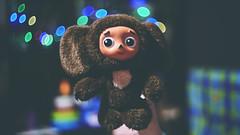 🐻 Cheburashka 🐻 (Vincent Monsonego) Tags: sony α αlpha alpha ilce7rm2 a7rii a7r2 helios 402 russian lens cheburashka christmas novy god toy love childhood