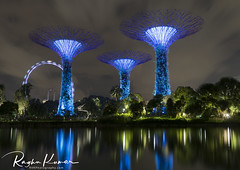 Gardens by the Bay, Singapore (rvk82) Tags: 2017 december december2017 garden gardens gardensbythebay greenery nikkor1424mm nikon nikond850 rvk rvkphotography raghukumar raghukumarphotography singapore wideangle wideangleimages rvkonlinecom rvkphotographycom sg