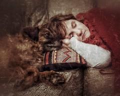 Nap Watcher (Flickr Goot) Tags: december 2017 samsung galaxy s6 handheld available light snapseed rocket dog mutt canine pet