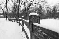 Winter Fence (mfhiatt) Tags: img91791217jpg winter snow christmas fence 365the2017edition 3652017 day362365 28dec17