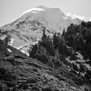McNeil Trail, Mt. Hood (Scott Withers Photography) Tags: mthood oregon