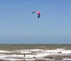 DSC_7122 (Copiar) (Carlos Gauna Vidal) Tags: mar parapente playa beach sea
