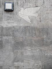 Die Taube. (Frieden sichert unseren Aufbau.) / 29.04.2017 (ben.kaden) Tags: magdeburg breiterweg friedenstaube kunstderddr kunstambau kunstimöffentlichenraum kunstimstadtraum 1950er stein 2017 sozialismus 29042017