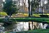 La rana de piedra (Franco D´Albao) Tags: francodalbao dalbao nikond60 trees park rana frog vigo estanque pond agua water contraluz backlight