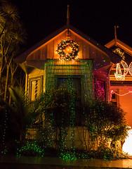 _1030750 (bhrushank1) Tags: christmas lights festive season auckland newzealand