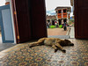Guatape (pmartinez009) Tags: colombia guatape viaje viajes travel colombiano colombiana