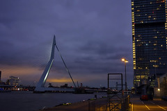 Erasmusbrug (STEHOUWER AND RECIO) Tags: erasmusbrug erasmusbridge rotterdam netherlands nederland holland dutch famous tv architecture brug water sky maas river nieuwemaas lights car light windows transport hollandamerikakade blue bluehour