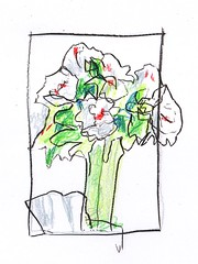 Flowers in Vase (jimblodget) Tags: sketch crayon test flowers tracing