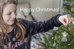 Happy Xmas (Sheldrickfalls) Tags: christmas xmas happyxmas