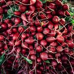 radishes thumbnail