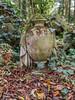 LR London 2017-300158 (hunbille) Tags: birgittelondonoktober20172lr london england nunhead cemetery magnificentseven magnificent seven victorian autumn fall allsaintscemetery all saints grave graves urn