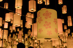DSC_9817 (sayo-tsu) Tags: ランタン ライト lamp