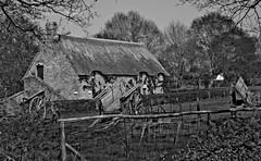 Saint  Lyphard - FRANCE (manguybruno) Tags: maison ancien nature paysage charette landscape