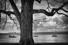 (Px4u by Team Cu29) Tags: see ammersse boot bayern segelboot voralpenland herrsching wolken strand ufer himmel erholen entspannen urlaub freizeit