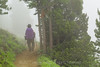 Hiker on Trail to Mount Townsend in Olympic National Forest (Lee Rentz) Tags: buckhornwilderness hoodcanal hoodcanalrangerdistrict july mounttownsend mttownsend olympicmountains olympicpeninsula olympics pacificnorthwest usforestservice washington washingtonstate america climate clouds cloudy fog foggy forest goretex green hike hikers hiking lush mist misty moist mountainous mountains nature northamerica northwest olympicnationalforest outdoor outdoors overcast rain rainy recreation subalpine summer terrain theolympics trail usa walking weather wet wild