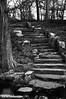Celebrating Milestones (PhoebeMeador) Tags: blackandwhite stairs dark curve texture stone staircase stepup steppingstones park milestone