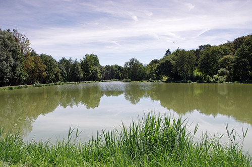 Epeigné-les-Bois (Indre-et-Loire)