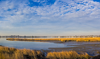 San Leandro Bay - Martin Luther King Jr. Regional Shoreline