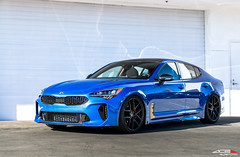 2018 Kia Stinger x ACE Alloy Flowform AFF02 (ACEALLOYWHEEL/AMF FORGED) Tags: kia stinger gt motors galpinautosports galpin gas acealloy acealloywheel acewheels flowform series aff02 matte black 20 inch aftermarket wheels kdm