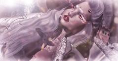 📷 Carry Me (Close up) (♔ - ̗̀ I c y V e ι n ѕ ̖́- ♔) Tags: fantasy punch anime japan demon kawaii demoness stealthic moccino houseofpain bubble fantasyfaeforest